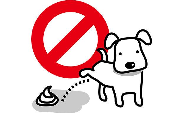 【玄関先や敷地内で犬や猫がオシッコやフンをして困っている方は!?】