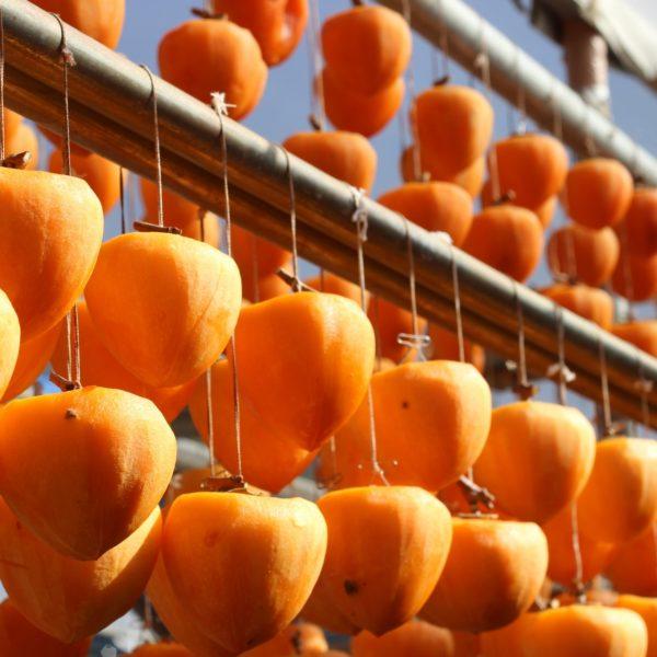秋に美味しい柿は生より干して食べる昔ながらの知恵