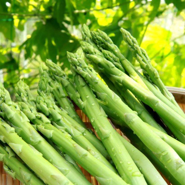 比べて納得「春と冬」のアスパラガスの栄養